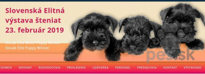 Slovenská Elitná výstava šteniat, Bratislava