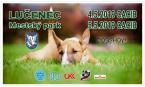 Medzinárodná výstava psov – 2x CACIB FCI Lučenec