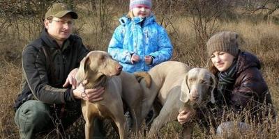 ,Rezervácia šteniatka weimarského stavača