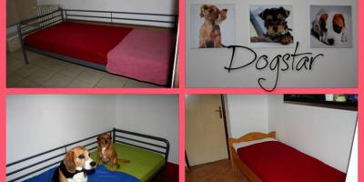 ,Hotel a škôlka pre psov