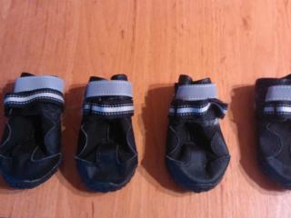 ,S P Boots topánky pre psov - veľ. S (3)