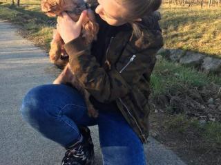 ,Venčenie psov Pezinok