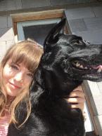 ,Vyvenčím psíka Bratislava