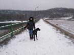 ,Ponúkam venčenie a kŕmenie psíkov v Pezinku