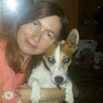 Zmena chovania psa